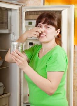 fridge-odor-e1325918211304